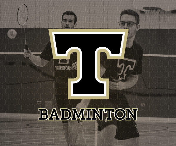 Icône Badminton